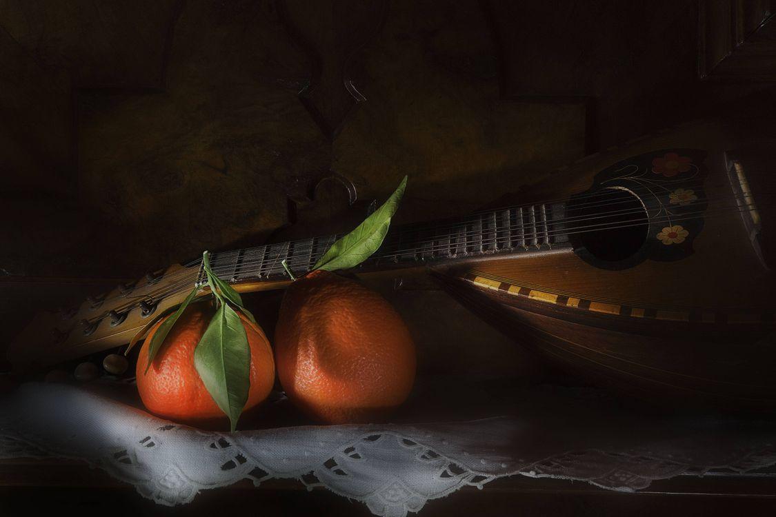 Картинка Мандолина, апельсины, фрукты, натюрморт на рабочий стол. Скачать фото обои разное
