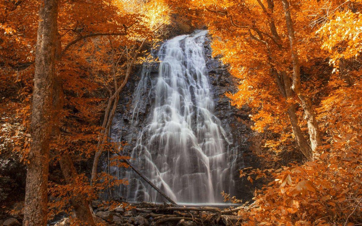 Фото бесплатно осенний водопад, листопад, деревья, природа