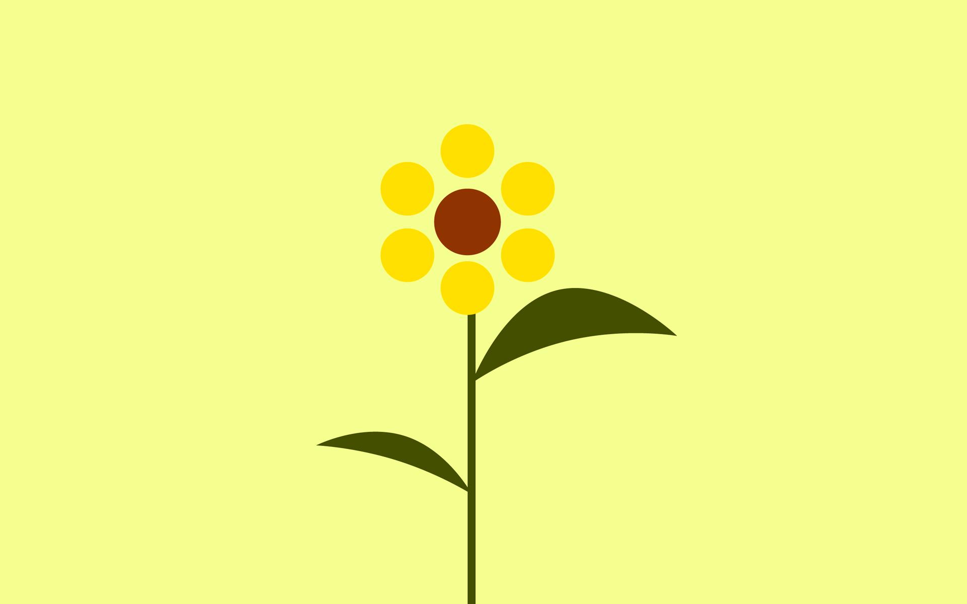 Обои желтый, цветок, лепестки, фон