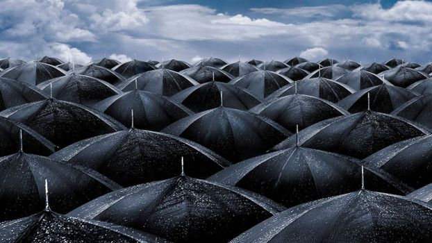 Photo free umbrellas, black, drops