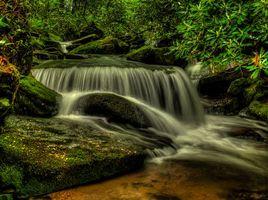 Бесплатные фото Shoal Creek Falls,Pisgah National Forest,North Carolina,водопад,речка,камни,деревья