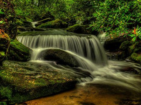 Фото бесплатно Shoal Creek Falls, Pisgah National Forest, North Carolina, водопад, речка, камни, деревья, природа
