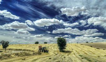 Бесплатные фото Сбор урожая,поле,трактор,дерево,дорога,небо,облака
