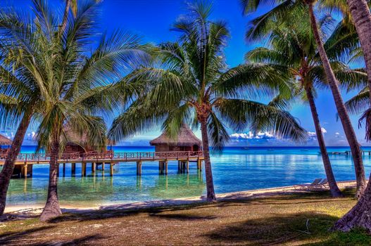 Фото бесплатно Rangiroa, French Polynesia, Французская Полинезия