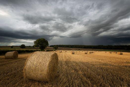 Фото бесплатно поле, тучи, сено