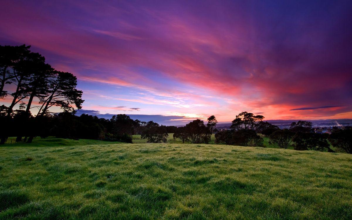 Фото бесплатно трава, зелено, закат - на рабочий стол