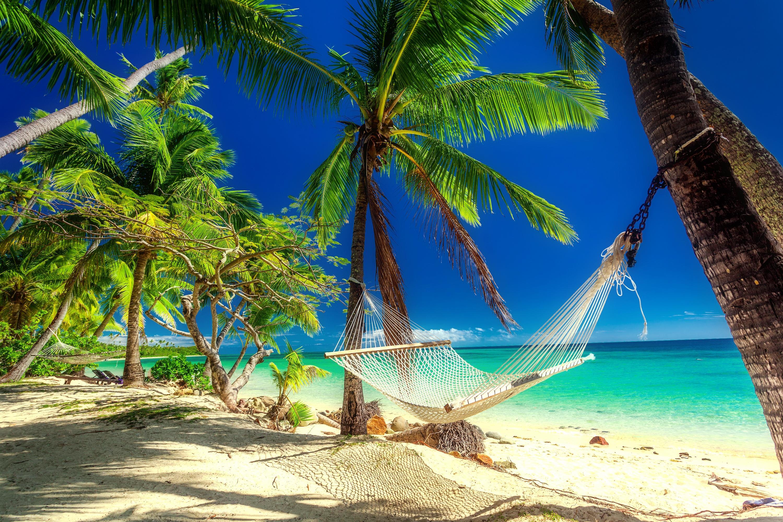 обои море, пальмы, остров, пляж картинки фото