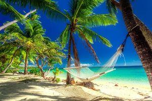 Бесплатные фото море,пальмы,остров,пляж,берег,песок,гамак