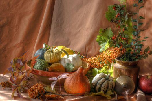 Фото бесплатно овощи, тыквы, ваза, натюрморт