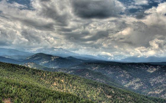Фото бесплатно горы, растительность, деревья