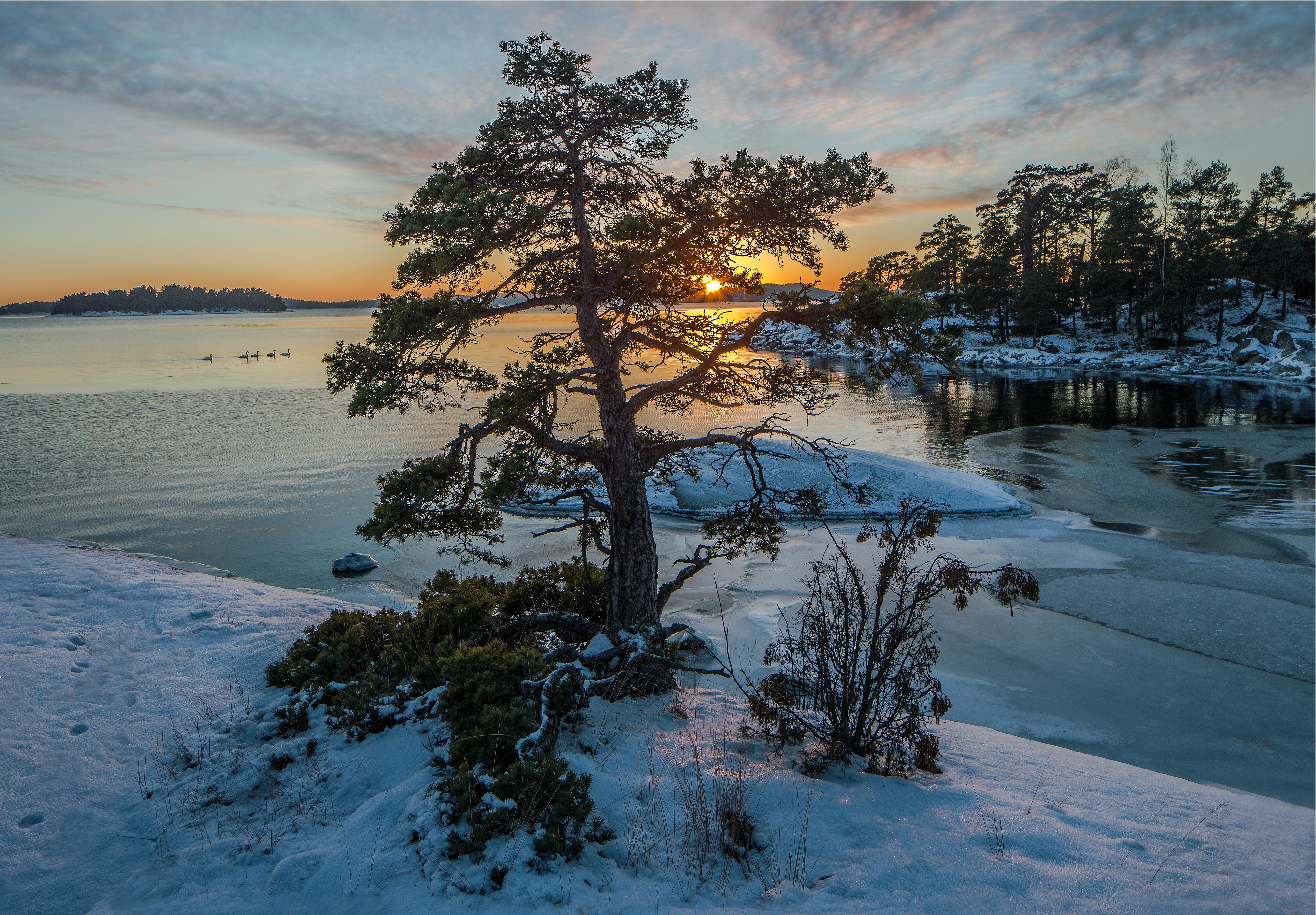 обои морской пейзаж, Швеция, зима, морской лед картинки фото