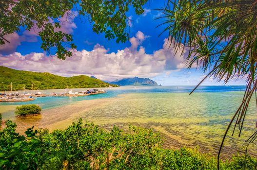 Заставки Гавайи, дома, деревья
