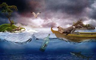 Обои девочка, лодка, море, бутылка, письмо, острова, акула, птица, чайка, ситуация