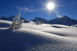 Бесплатные фото зима,холмы,горы,снег,деревья,пейзаж