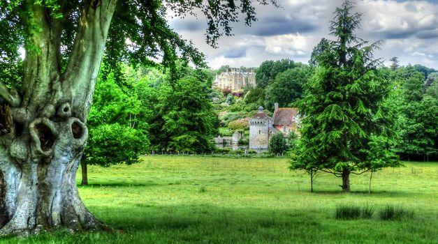 Фото бесплатно Англия, Сад, Великобритания