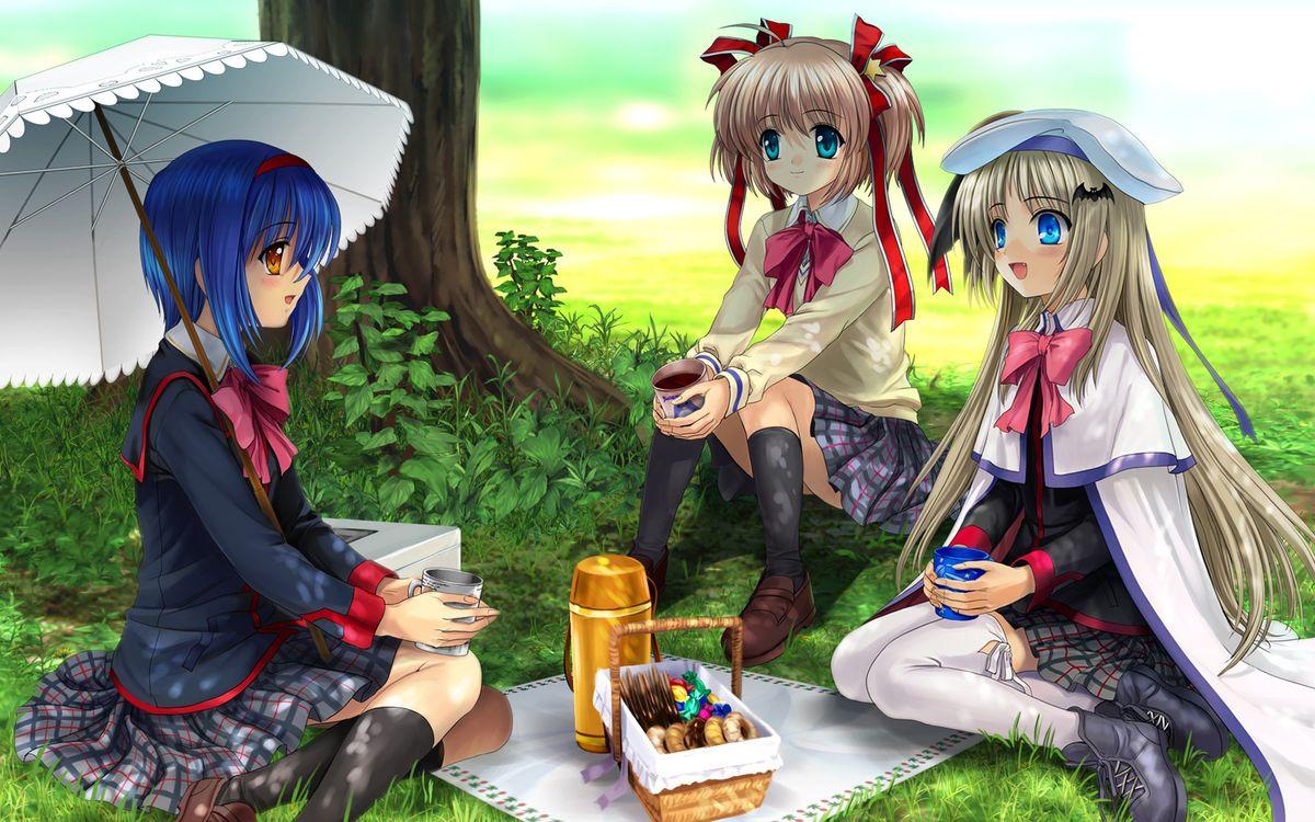 Фото бесплатно аниме, пикник, газон, 3 девушки, деревья, разное