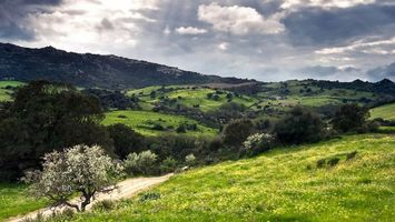 Бесплатные фото холмы,сопки,трава,деревья,кустарник,небо,облака