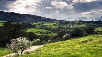 Фото бесплатно холмы, сопки, трава
