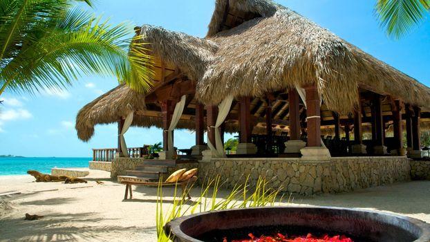 Фото бесплатно море, вода, пальмы, трава, хижина, крыша, природа