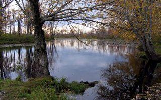 Фото бесплатно вода, пейзажи, озеро