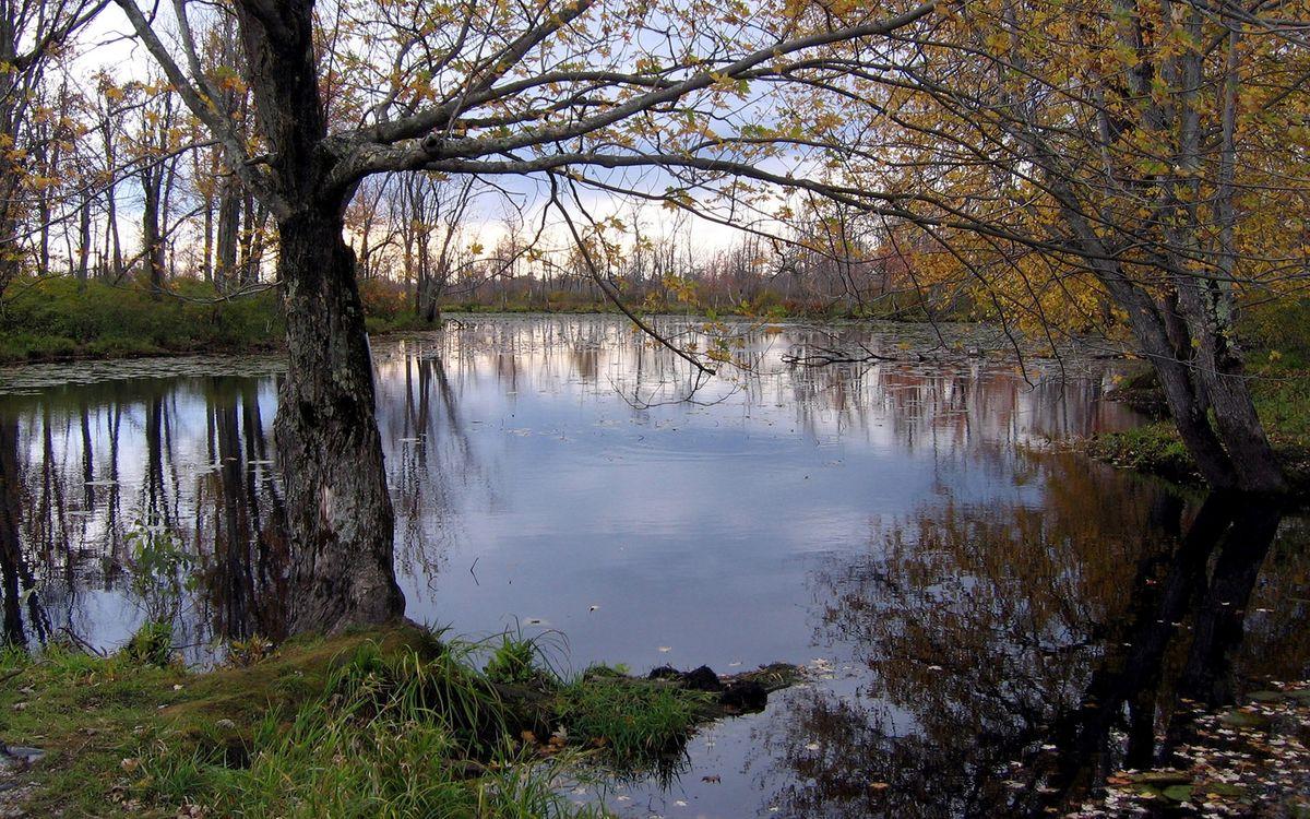 Фото бесплатно озеро, вода, река - на рабочий стол