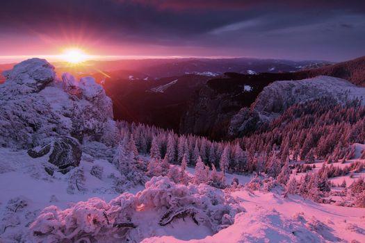 Фото бесплатно пейзажи, солнце, зима