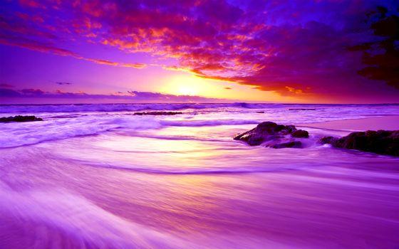 Фото бесплатно розовый, закат, розовое