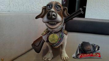 Фото бесплатно собака, ружье, журнал