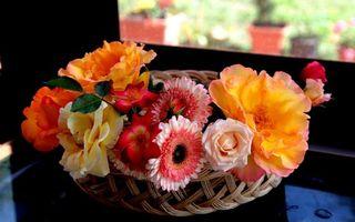 Бесплатные фото ваза, композиция, цветки, лепестки, корзина, плетеная, стол