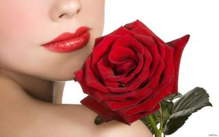 Фото бесплатно девушки, роза, цветок