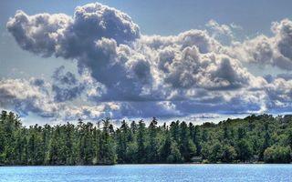 Обои вода, река, озеро, лес, ёлки, небо, облока, природа