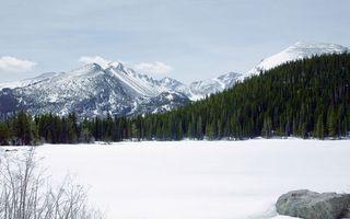 Бесплатные фото зима,лес,елки,горы,высота,облака,скалы