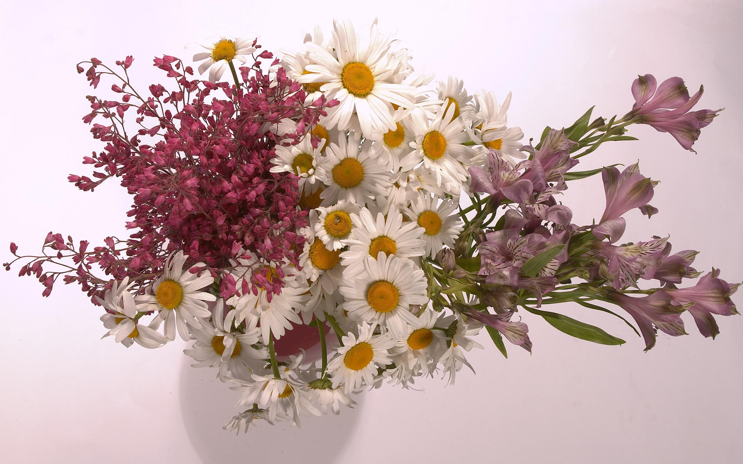 обои букет, цветы, разные, листья картинки фото