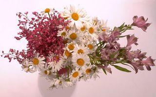Бесплатные фото букет,цветы,разные,листья,ваза,белая