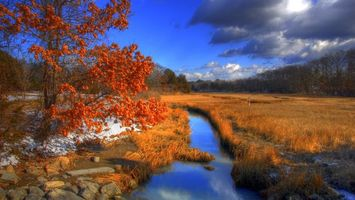Бесплатные фото деревья,лес,осень,листопад,трава,река,небо