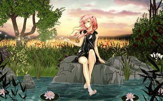Бесплатные фото девочка,волосы,розовые,прическа,ноги,руки,камни