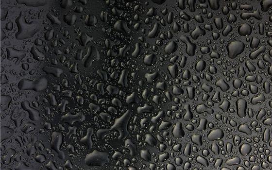 Бесплатные фото капли,роса,дождь,вода,поверхность,темная,текстуры