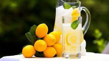 Бесплатные фото лимон,лимонад,стакан,графин,стол,листья,лето
