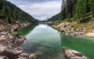 Бесплатные фото река,волны,отражение,небо,облака,лес,деревья