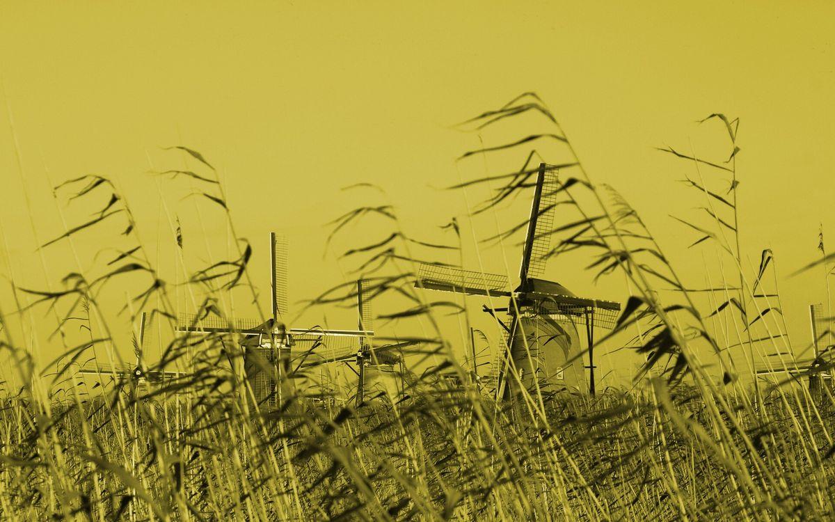 Фото бесплатно трава, поле, мельницы - на рабочий стол