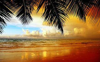 Бесплатные фото тропики,море,пляж,закат,пейзажи