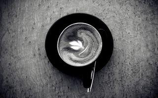 Фото бесплатно кофе, лист, черно белая