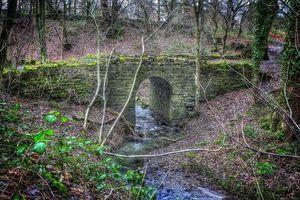Бесплатные фото Бек Мост,Roundhay,Парк,Западный Йоркшир,Англия,река,деревья