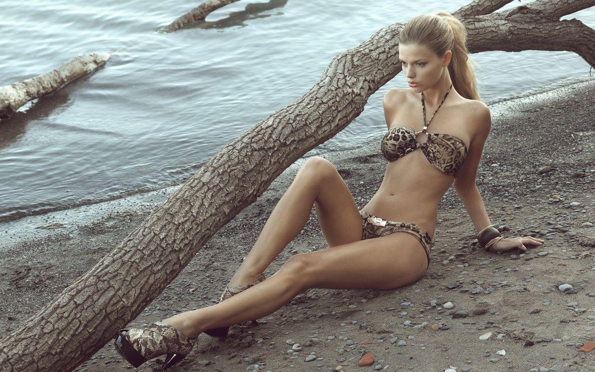 Фото бесплатно берег, дерево, русая - на рабочий стол