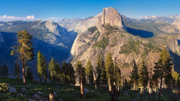 Бесплатные фото деревья,горы,скалы,небо,склон,трава,мох,природа