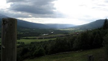 Фото бесплатно деревья, холмы, высоко