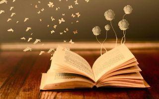 Заставки книга, страницы, бабочки