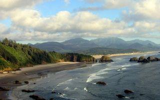 Фото бесплатно океан, лес, небо