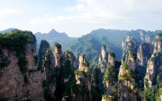 Фото бесплатно национальный парк чжанцзяцзе, горы улинъюань, кустарники