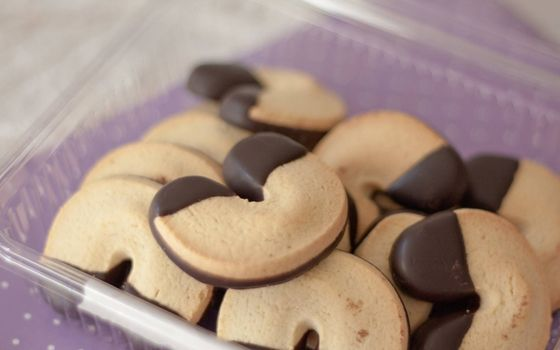 Photo free cookies, chocolate icing, container
